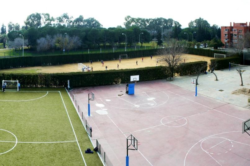 http://colegioalemansevilla.com/de/files/gallery/thumb/1489759213-campos.jpg