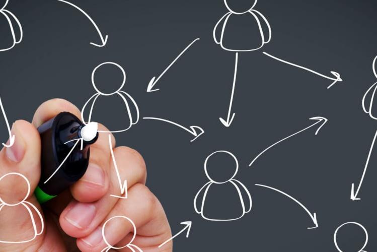 Estructura Organizativa
