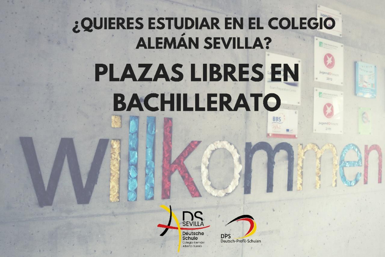 ¿QUIERES ESTUDIAR EN EL COLEGIO ALEMÁN SEVILLA?