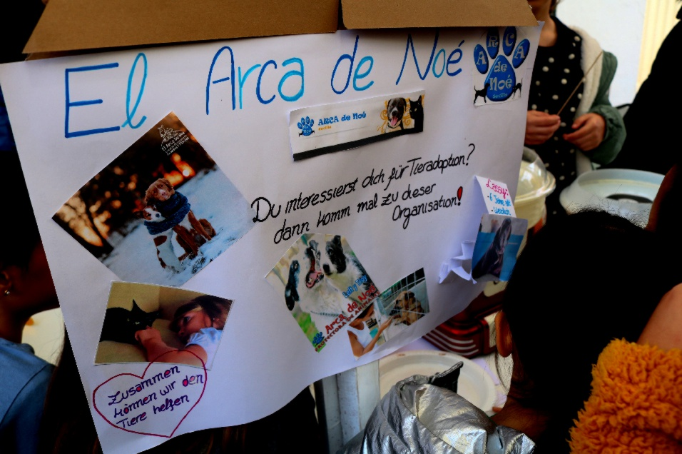 https://colegioalemansevilla.com/files/gallery/thumb/1547210325-mn2.jpg